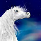 Star Gazer .. White Stallion by LoneAngel