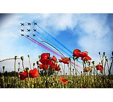 Reds and Poppies Photographic Print