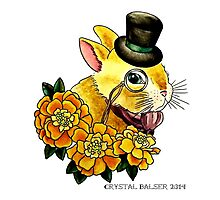 Top Hat Bunny Photographic Print