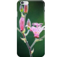 Toad lily flower opens for pollination iPhone Case/Skin