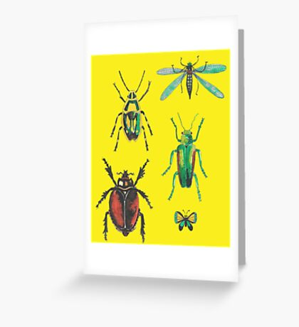 Insect pattern Greeting Card