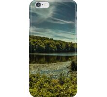 Lakeview iPhone Case/Skin
