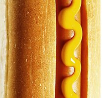 Hot Dog  by Andrew Bret Wallis