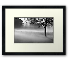 a beautiful morning Framed Print