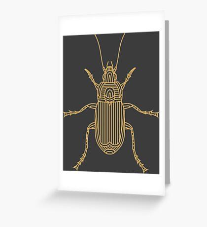 Poecilus Cupreus - Bug  Greeting Card