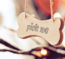 Pick me message on small wood board, vintage concept Sticker
