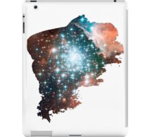Brush Cosmic iPad Case/Skin