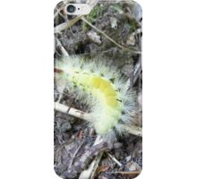 hop dog moth iPhone Case/Skin
