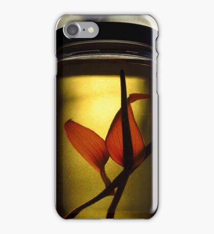 Light Filter ~ Part Two iPhone Case/Skin