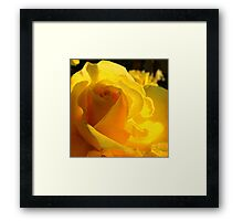 A Rose for My Mother  Framed Print