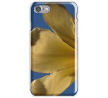 Light Filter ~ Part Three iPhone Case/Skin