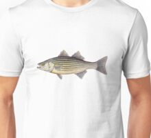 Striped Bass (Morone saxatilis) Unisex T-Shirt
