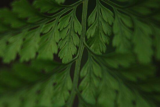 Just green by brilightning