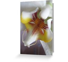 ORCHID MACRO Greeting Card