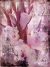 Gladiolas Blended by Sandra Foster