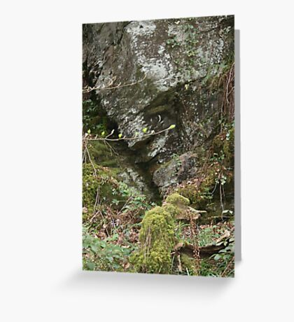 prince of the rock Greeting Card