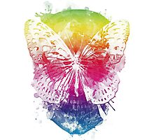 butterflyed skull Photographic Print