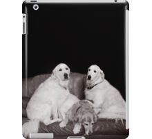 Bookends iPad Case/Skin