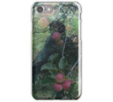 Echoes - Apple Harvest iPhone Case/Skin
