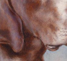 Dog Portrait by Carl Reichert Sticker