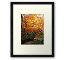 stream in color lll Framed Print