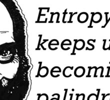 Entropy keeps us from becoming palindromes Sticker