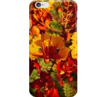Mexican Bird of Paradise iPhone Case/Skin