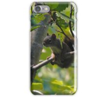 Curious Little Guy iPhone Case/Skin
