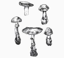 Mushrooms Circle by HiddenStash