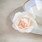 The Sweetest Rose by Lyn  Randle