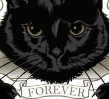 Black Cat Cult Sticker
