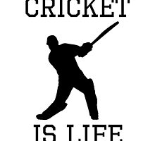 Cricket Is Life by kwg2200