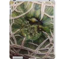 Cantaloupe Closeup iPad Case/Skin