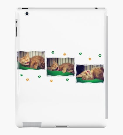 3 Ginger Kittens iPad Case/Skin