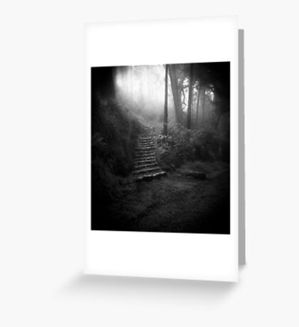 Mountain Steps B&W (Holga) Greeting Card