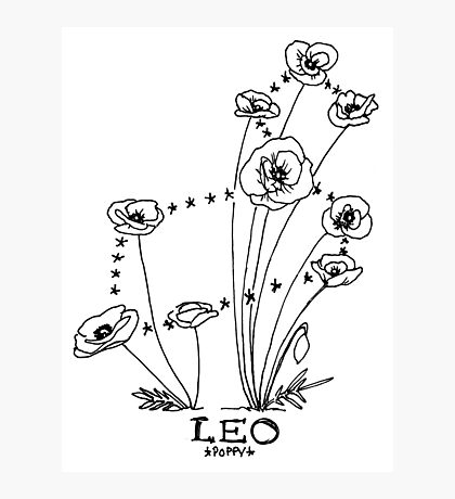 Floral Constellation - Leo Photographic Print