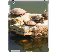 SUNBATHING TURTLES iPad Case/Skin