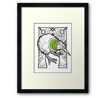 kiwi fruit the bird Framed Print