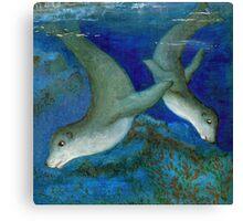 Seal kingdom Canvas Print