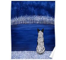 Blue Forest, Starry Sky (Blue Heeler), by Artwork by AK Poster