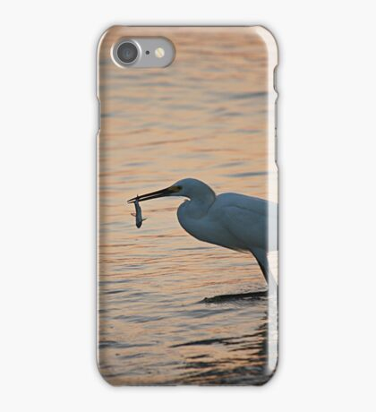 The Early Bird Gets The Fish iPhone Case/Skin