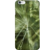 Plantae Fractals iPhone Case/Skin