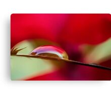 All Alone in the Red Zone Canvas Print