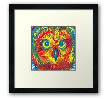 primary color owl Framed Print
