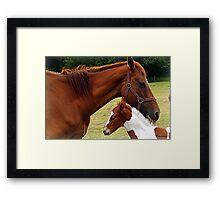 Mother and Foal Framed Print