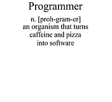 Programmer an Organism that turns caffeine and pizza into software T Shirt Funny Tees S M L XL Photographic Print