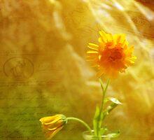 Yellow Note by Randi Grace Nilsberg