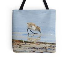 Red-capped plover chick eating Tote Bag