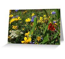 wildflower bank Greeting Card