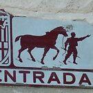 one way horseman by Babz Runcie